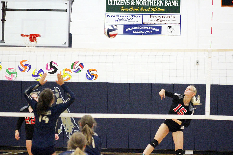 Lady Warriors Volleyball takes third at Williamson tournamen