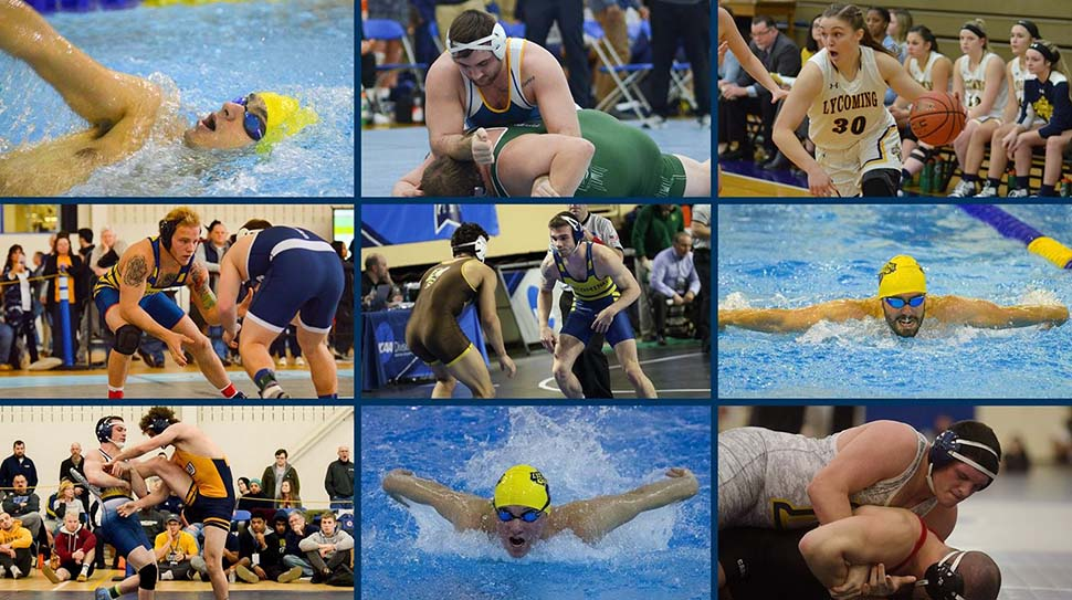 Nine Warriors named to Winter Academic All-MAC Team