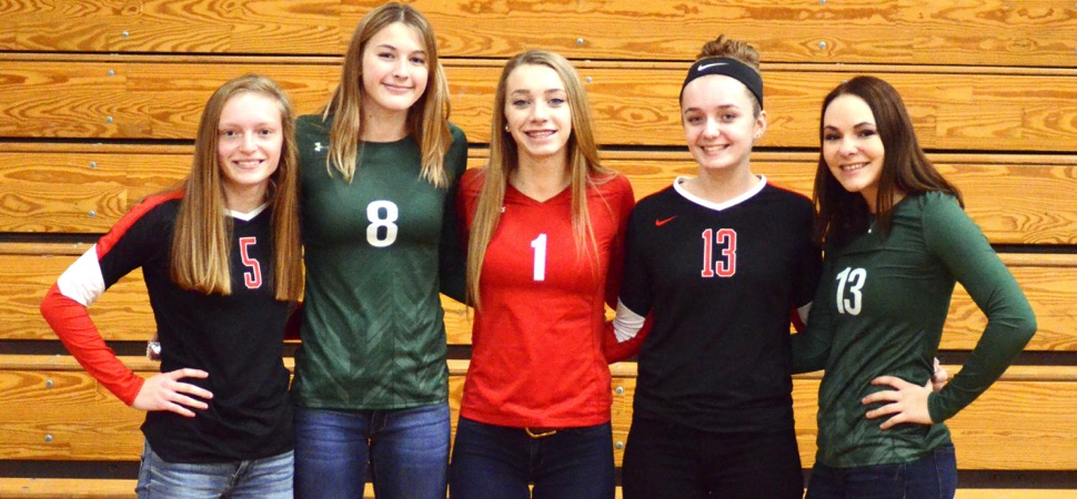 2017 NTL Large School Volleyball All-Stars announced.