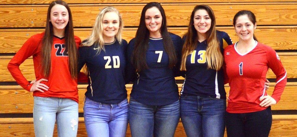 2017 NTL Small School Volleyball All-Stars announced.
