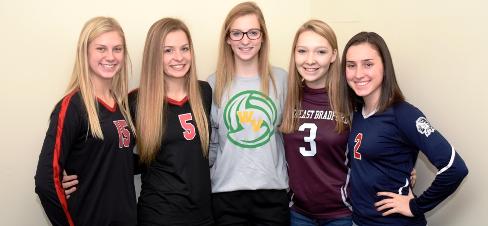 2018 NTL Small School Volleyball All-Stars announced