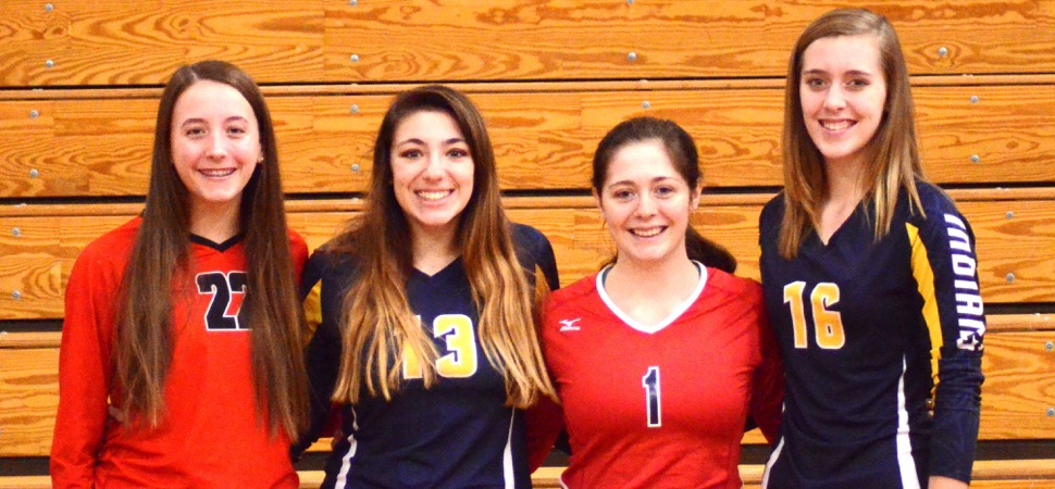 D4 A Volleyball All-Stars announced