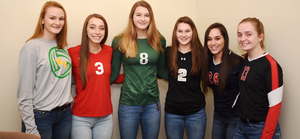 D4 AA Volleyball All-Stars announced.