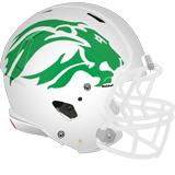 South Fayette Lions