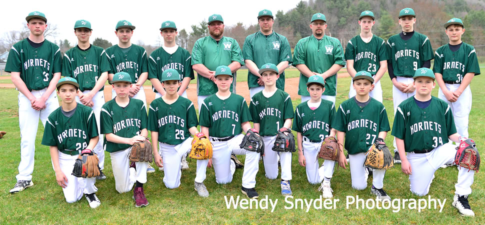 2018 Wellsboro Hornets Middle School Baseball Roster