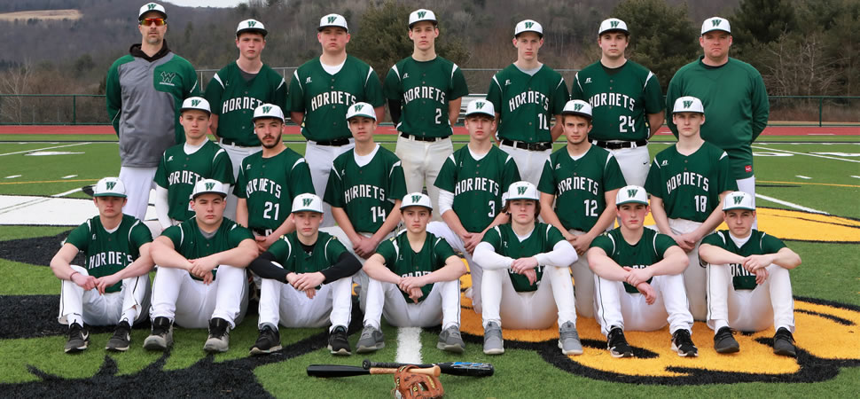 2019 Wellsboro Varsity Baseball Team