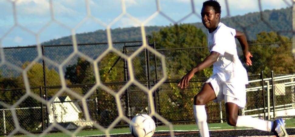 Hornets blow out Towanda, 10-1