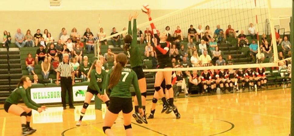 Lady Hornets sweep North Penn-Liberty.