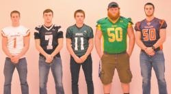 The gridiron's best: The All-Region football players for 2015
