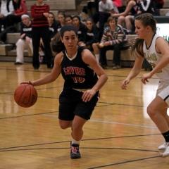 2013 Sayre vs. Wyalusing Girls Basketball
