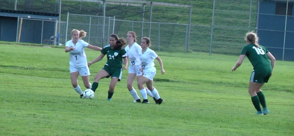 Lady Hornets shutout Mansfield, 2-0
