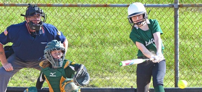 Lady Hornets knock off Loyalsock in extra innings
