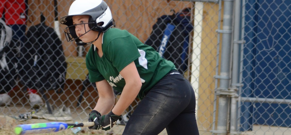 Lady Hornets top Williamson, 9-6 for third straight win.