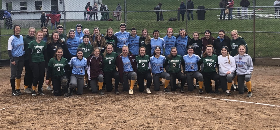 Lady Hornets fall to Loyalsock, 12-2