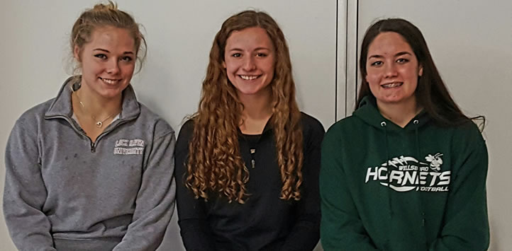 2016 Wellsboro Hornets Varsity Girls Swimming Roster