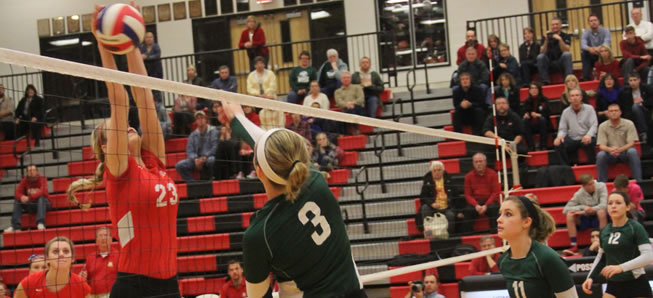 Lady Hornets fall to Holy Redeemer in first round of PIAA playoffs.