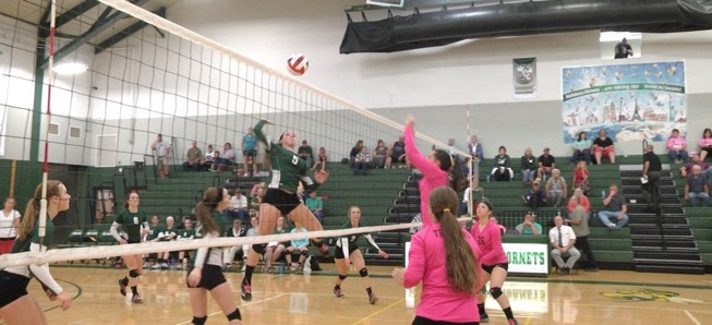 Lady Hornets fall Troy in 5 sets.