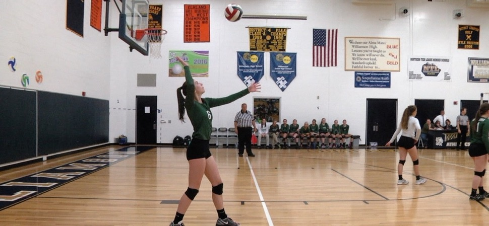 Lady Hornets fall to North Penn-Liberty in District 4 volleyball championship.