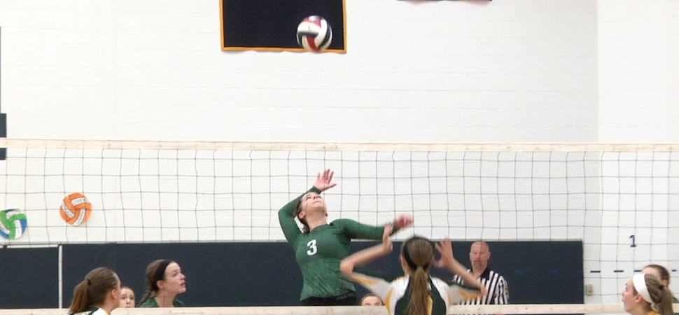 Lady Hornets edge Wyalusing, 3-2 in District IV semi-finals.