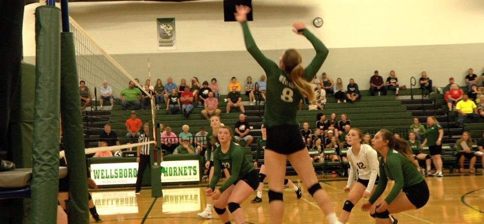 Lady Hornets sweep Towanda to improve to 2-0
