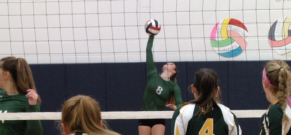 Lady Hornets sweep Wyalusing to return to D4 AA finals.