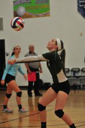 Troy, Wyalusing notch wins at D4 volleyball