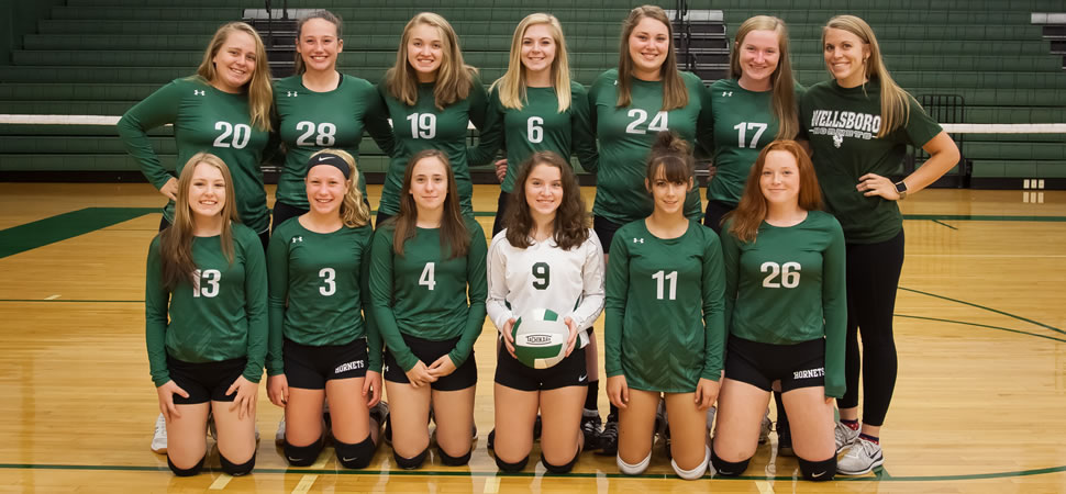 2018 Wellsboro Hornets Junior Varsity Volleyball Roster