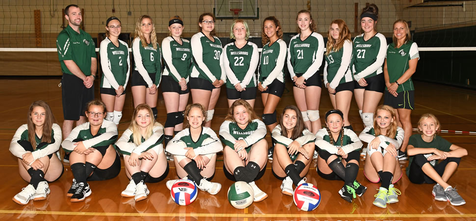 2018 Wellsboro Hornets Middle School Volleyball Roster