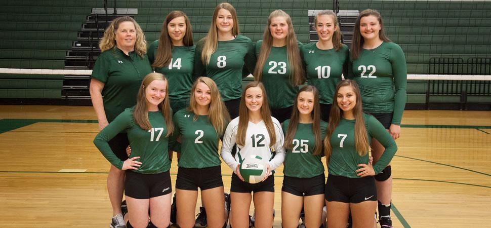 2018 Wellsboro Hornets Varsity Volleyball Roster
