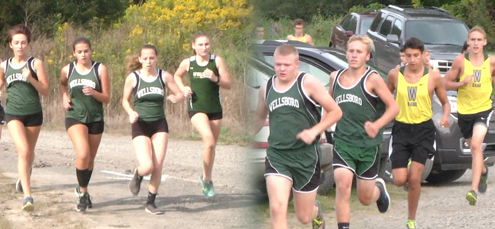 Wellsboro XC boys split with Athens, Wyalusing; girls top Wyalusing