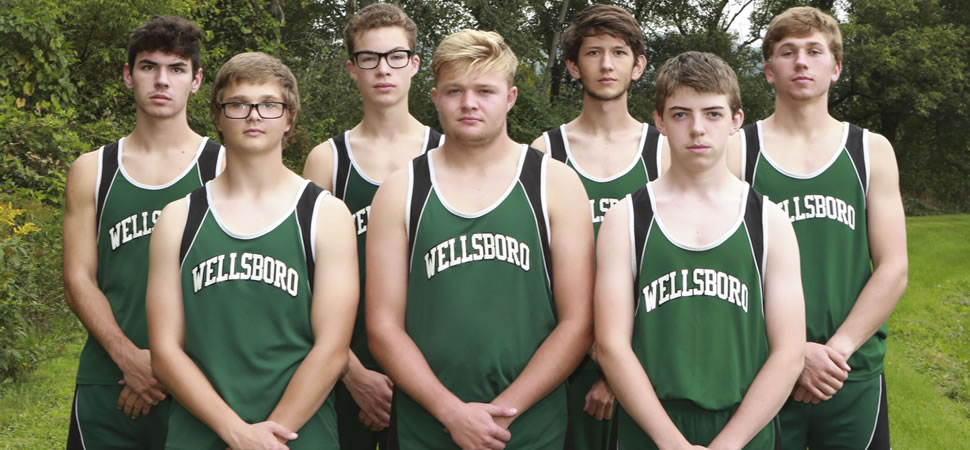 2018 Wellsboro Varsity Boys Cross Country Team